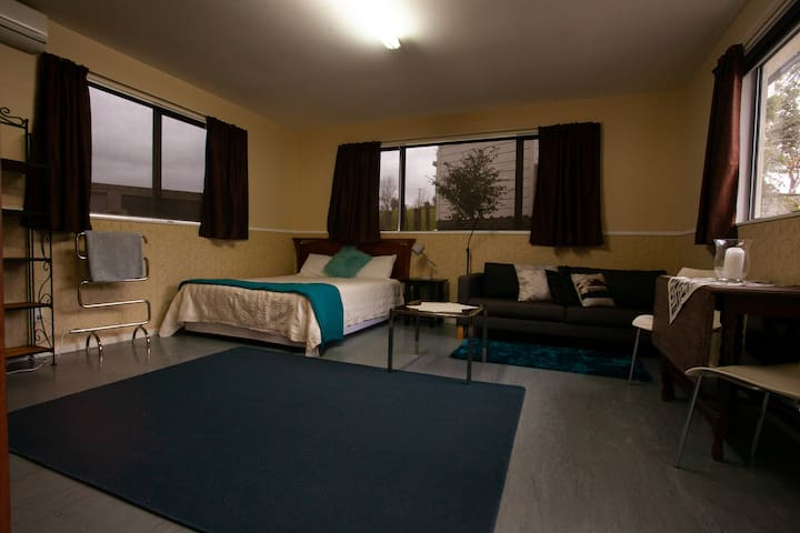 Spacious Main Room with Queen Bed