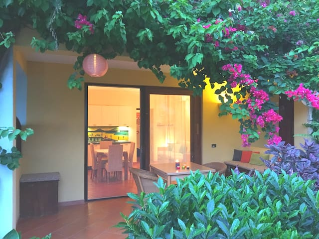 Terrace with beautiful bougainvilles