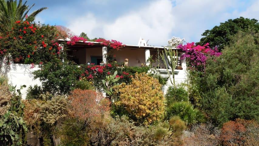 Aglaia tipica casa eoliana - Stromboli - Wohnung