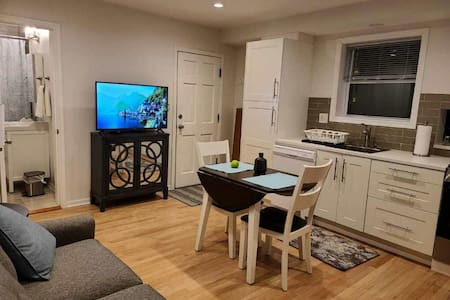 Lux 1 Bdrm Suite w/Spa 25 Min Train Dwtn Chicago