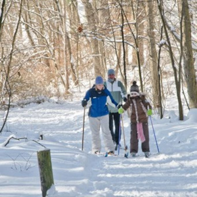 We have cross country skis here at the BNB !!! take them on the towpath and glide for miles !! so much fun!!