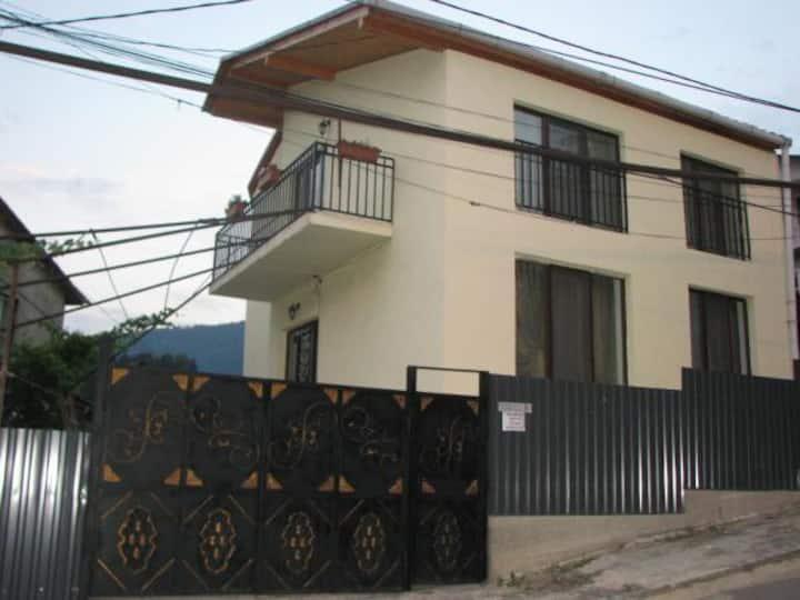 Апартаменты Borjomi Guest House