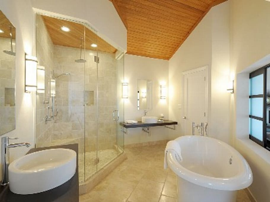 Bathroom wtih jetted tub and glass enclosed rain shower