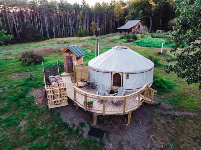 Pristine and luxe yurt, surrounded by nature