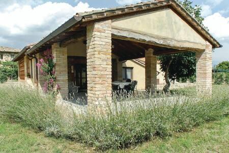 La Spizzica 1 - San Vito In Monte