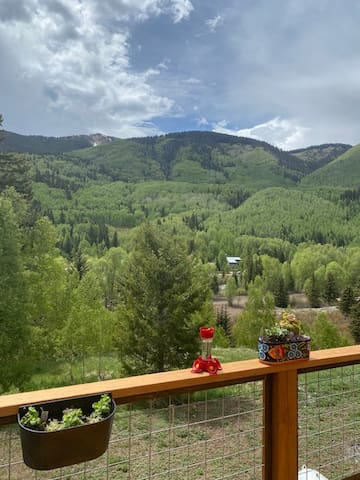 Beautiful Studio 30 minutes to Telluride