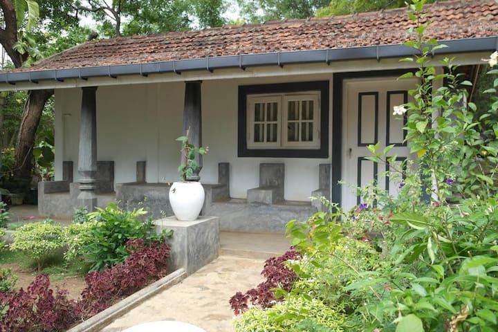 Saffron Nest Habarana Villa