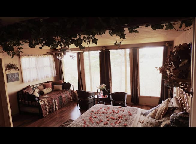 The Nest at 188 - Eureka Springs - House