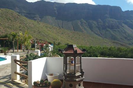 Entre montañas - San Bartolomé de Tirajana