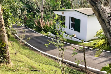 "Hacienda Pomarrosa Villa ""Pacas"""