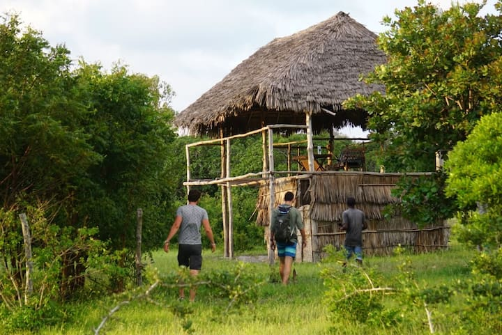 Mida Creek Nature Camp - Makuti House