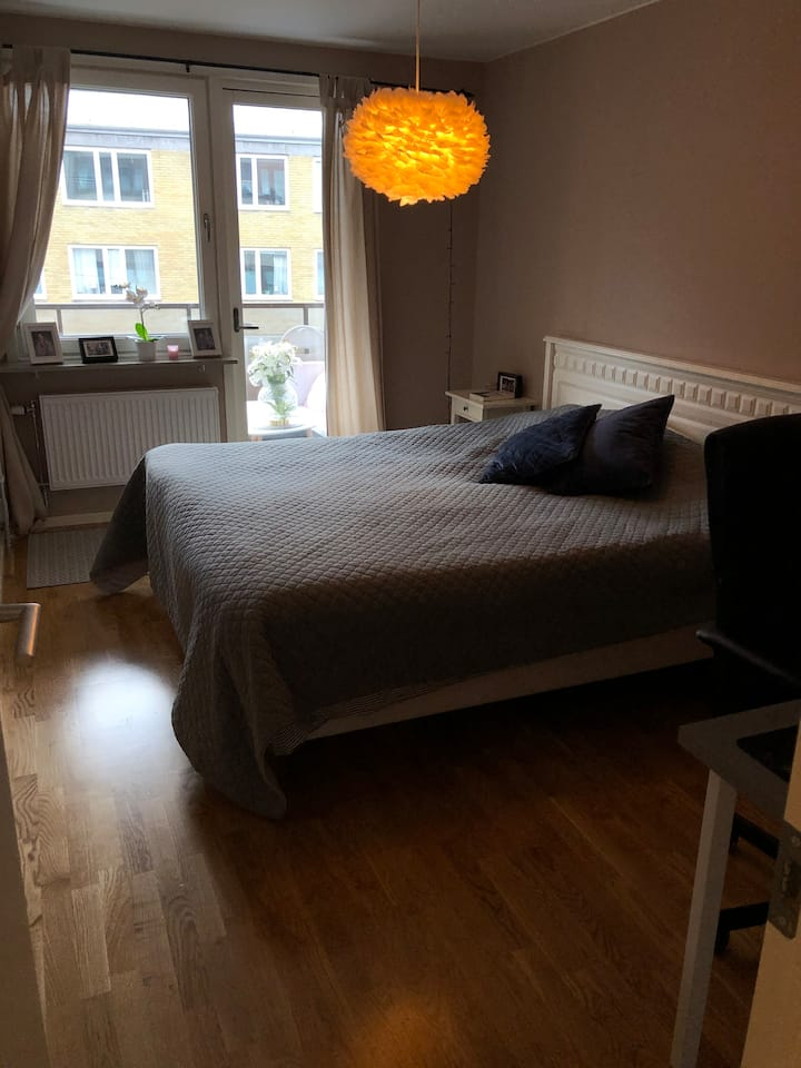 Newly renovated spacious room in the best area.