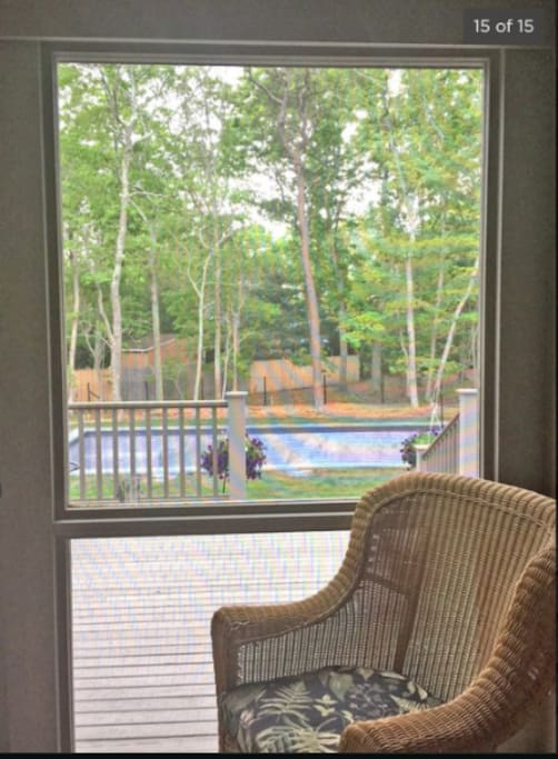 View of pool from screened in porch