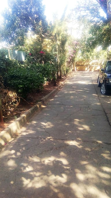 Free Parking area accessible to guests