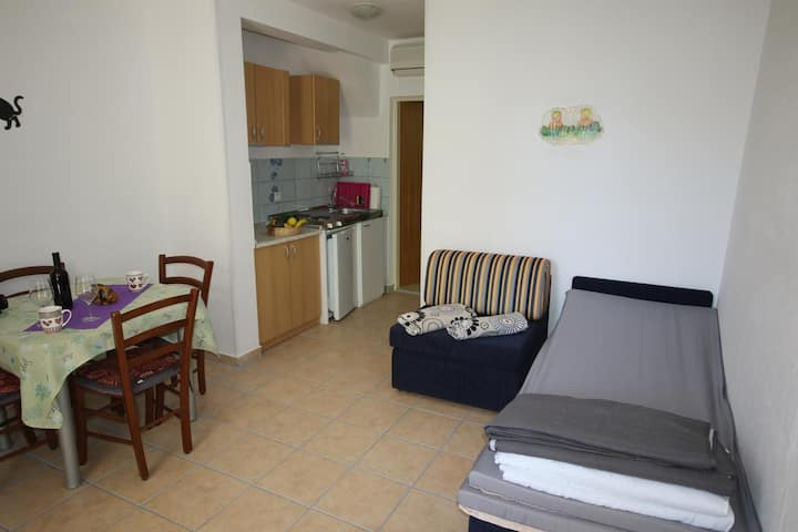 One bedroom apartment with balcony Starigrad, Paklenica (A-17772-c)