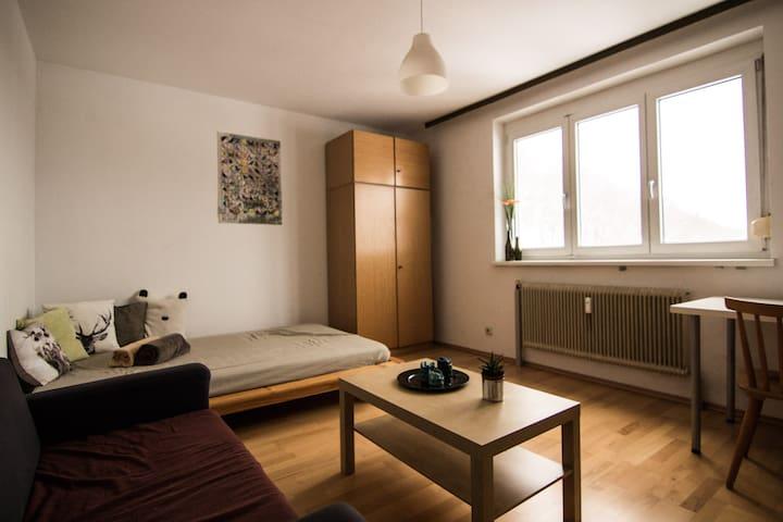 Cozy room, close to city center (shared flat) - อินส์บรุค - (ไม่ทราบ)