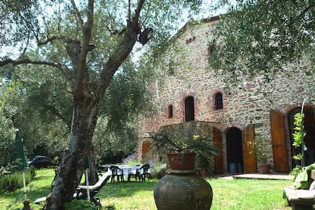 9 Km from sea, country villa, olive garden bbq - Camaiore - Huvila