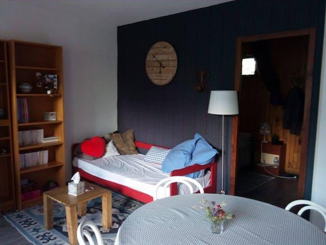 Appart 35m² proche de Saint Lary, ski, rando, cure - Guchen - Wohnung