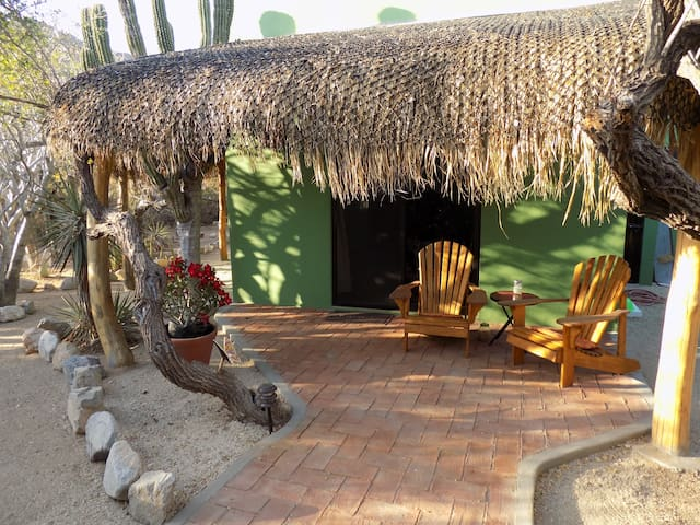 Casa Cactus ~ The Secret Garden - Cabo Pulmo - Huis