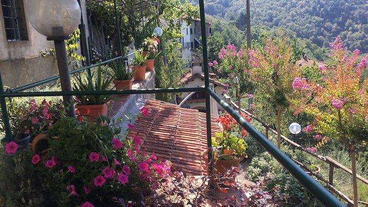 Villa Baudrocco