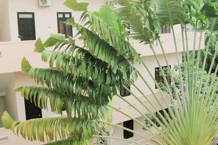 Hostel private rooms with Garden & Hill View - Buon Ma Thuot - Hostel