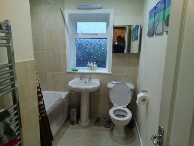 Downstairs modern bathroom with shower over bath