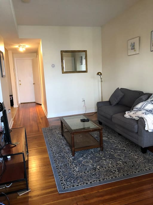 Spacious 1 Bedroom Apartment Close To Yale Apartments For Rent In New Haven Connecticut