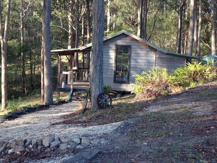 The Safari Lodge Retreat