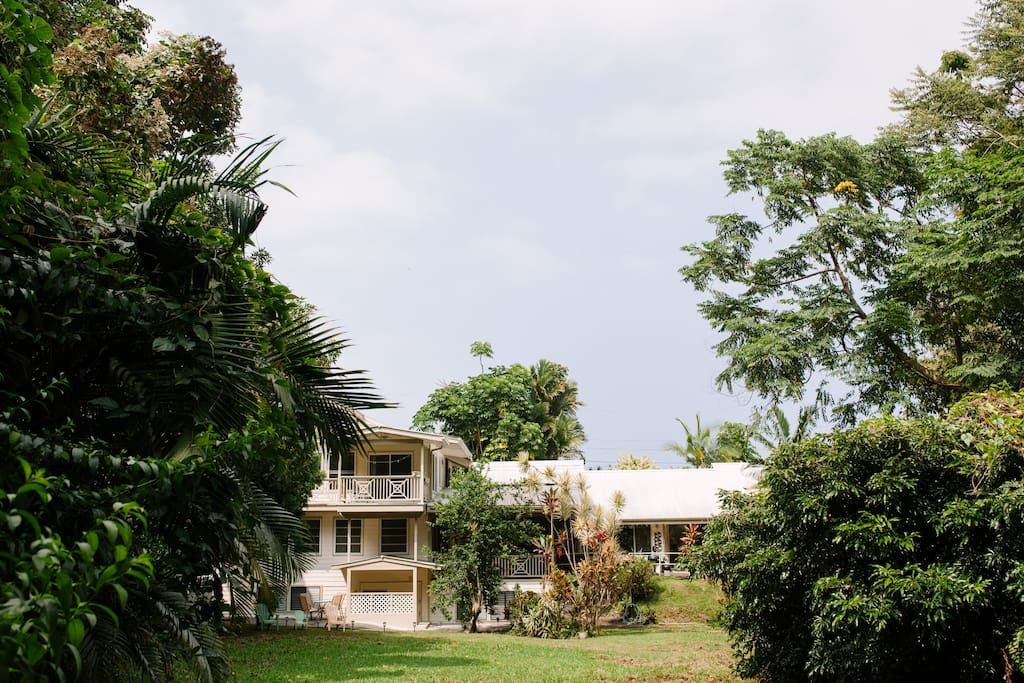 Apartments In Hilo Hawaii For Rent