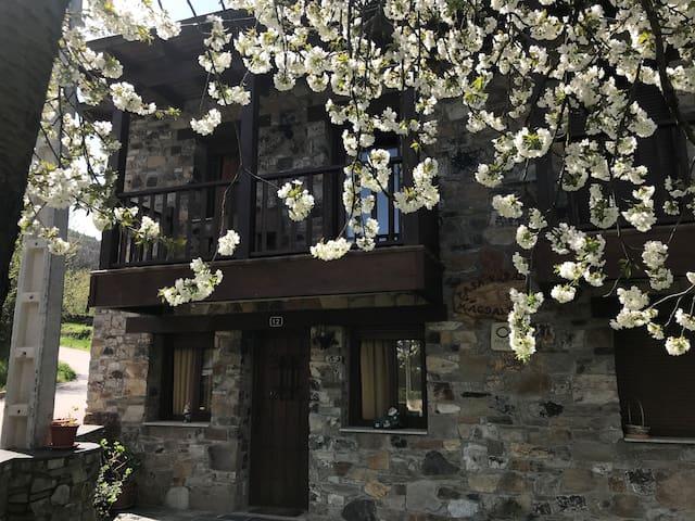 Casa Rural Magdalena