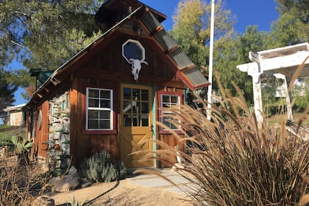 ~Disinfected~ Coyote Ridge Tiny House