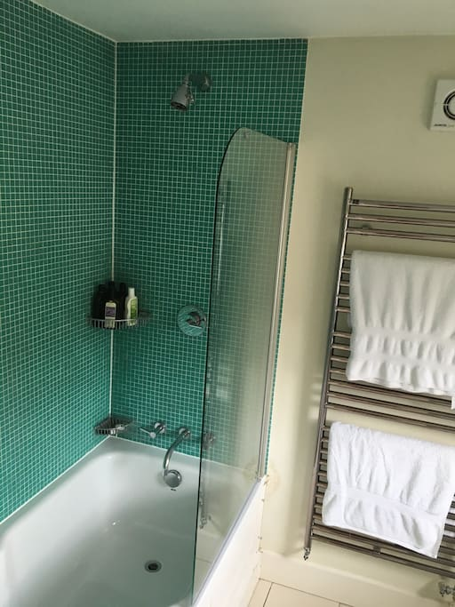 Quirky blue bath and shower room