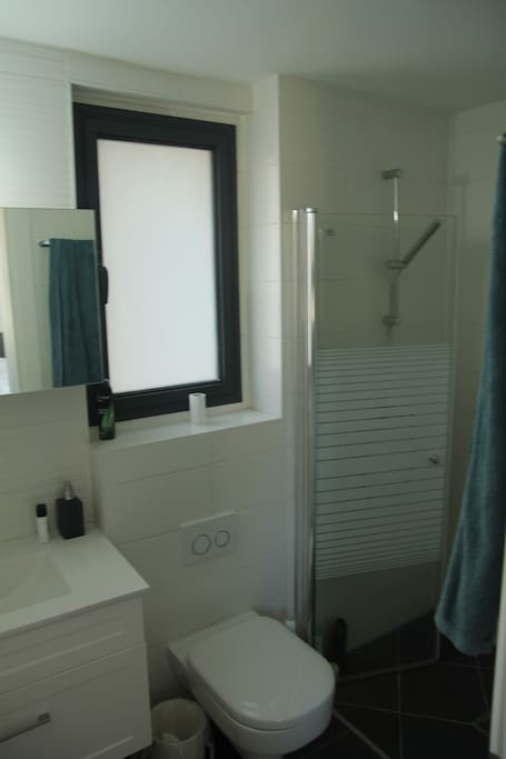 Private shower + toilet