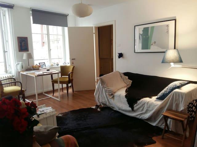 Grand Studio au coeur de Strasbourg - Strasbourg - Lägenhet
