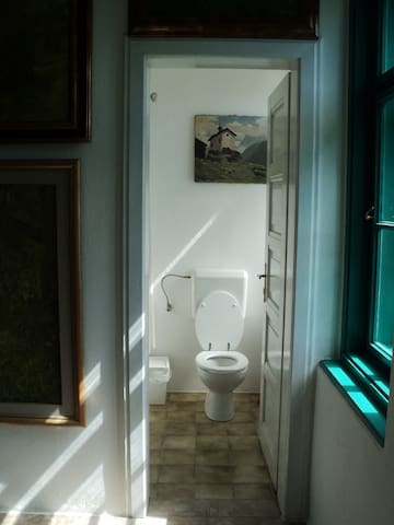 There is one toilet in the basement and another one on the first floor.