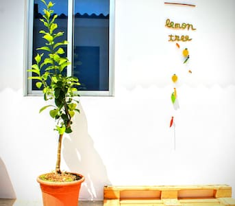 Lemon Tree Backpackers - Room with private toilet