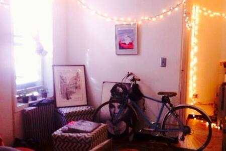 Spacious bedroom on Canal Street. Walking distance to Soho, LES, East Village, West Village, Financial District and more! Lots of bars, restaurants, and shops nearby. Looking to sublet it specifically from 12/22-01/24! Special offers for the month!
