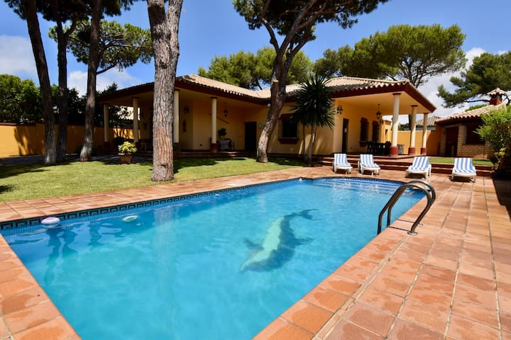 Villa with wonderful garden, big BBQ area and pool