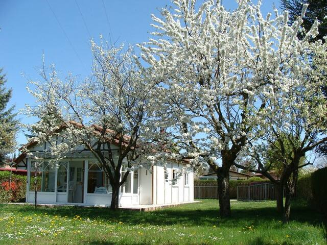 Lovely cottage with private garden. - Castrillo del Val - Hus