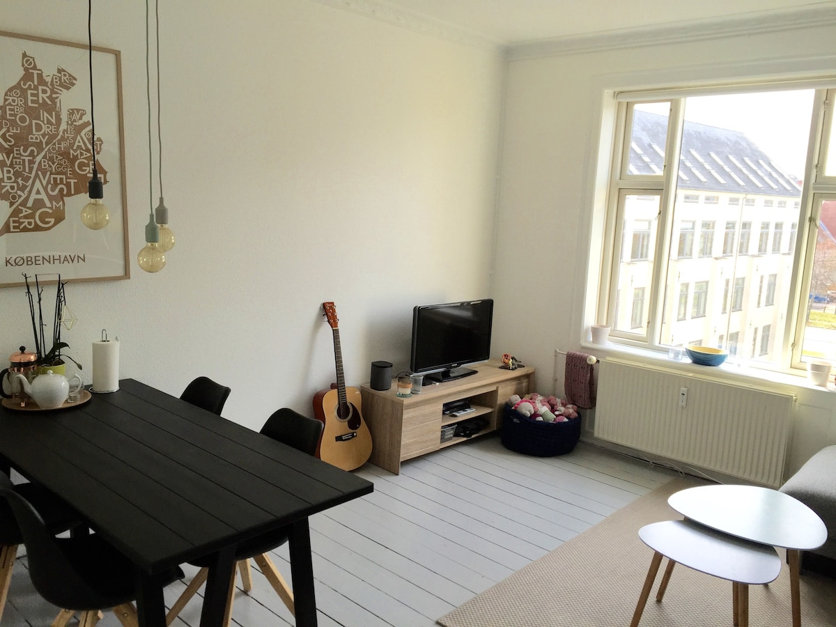 Bright Apartment In Copenhagen   Apartments For Rent In Copenhagen, Denmark