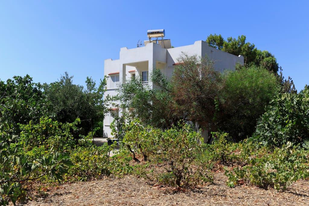 Villa Stamatis