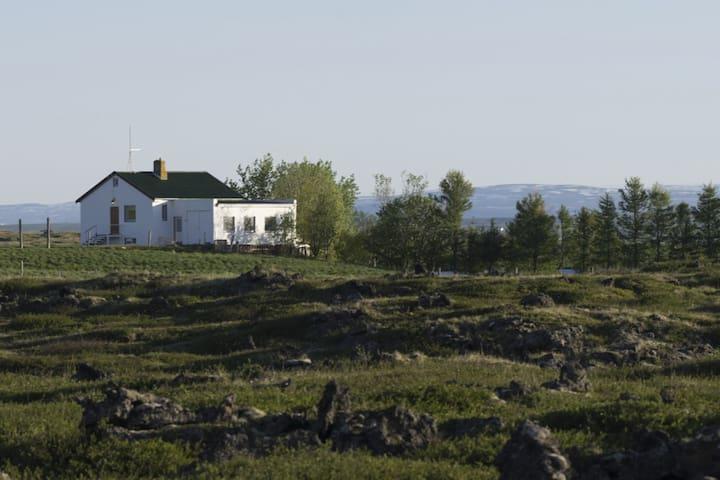 Geiteyjarstrønd 4 - Mývatn - Dom