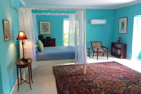 Colleton Great House Blue Room - BB - Guesthouse