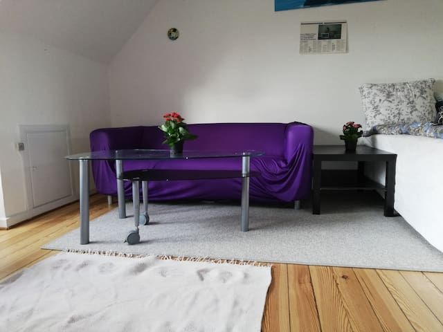 Cozy Cph flat Entire place  is yours