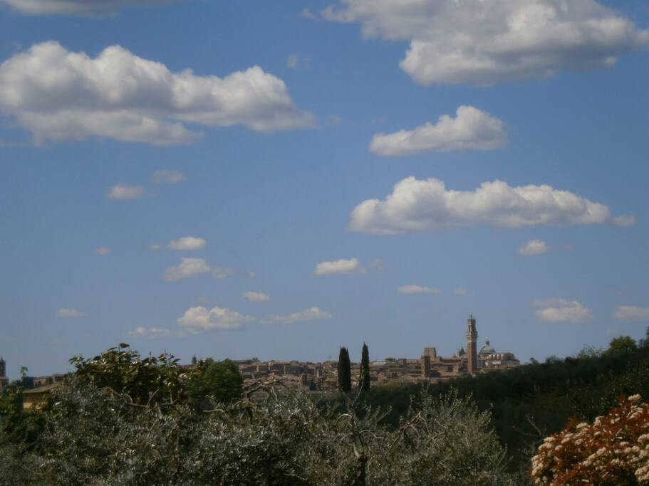 View of Siena from the garden