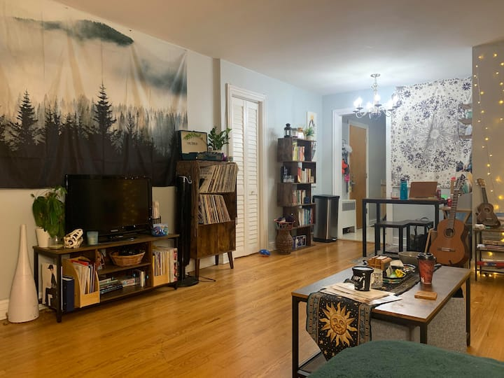 1 Bedroom Sunny Apartment in Rogers Park!