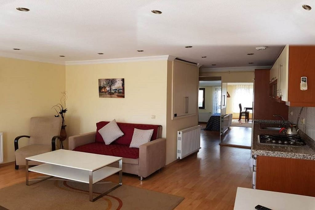 Full comfortable apartment