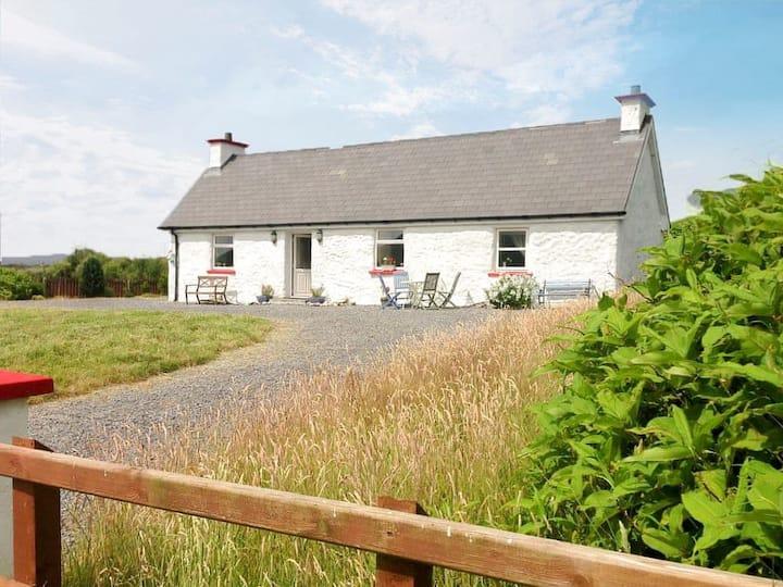 Little Irish Cottage (W32429)