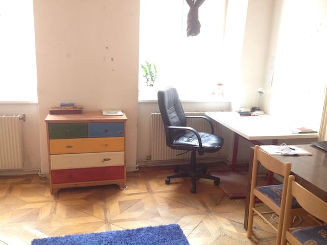 Simple room for cool guests - Wien - Apartment