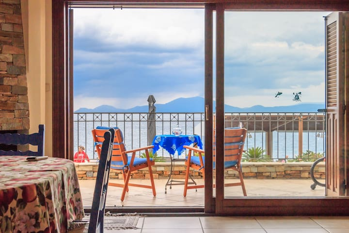 View House - Agria